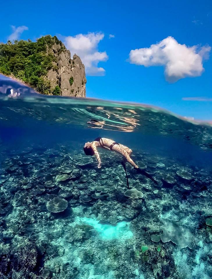 這裡是「愛妮島 • Palawan El NIDO 」
