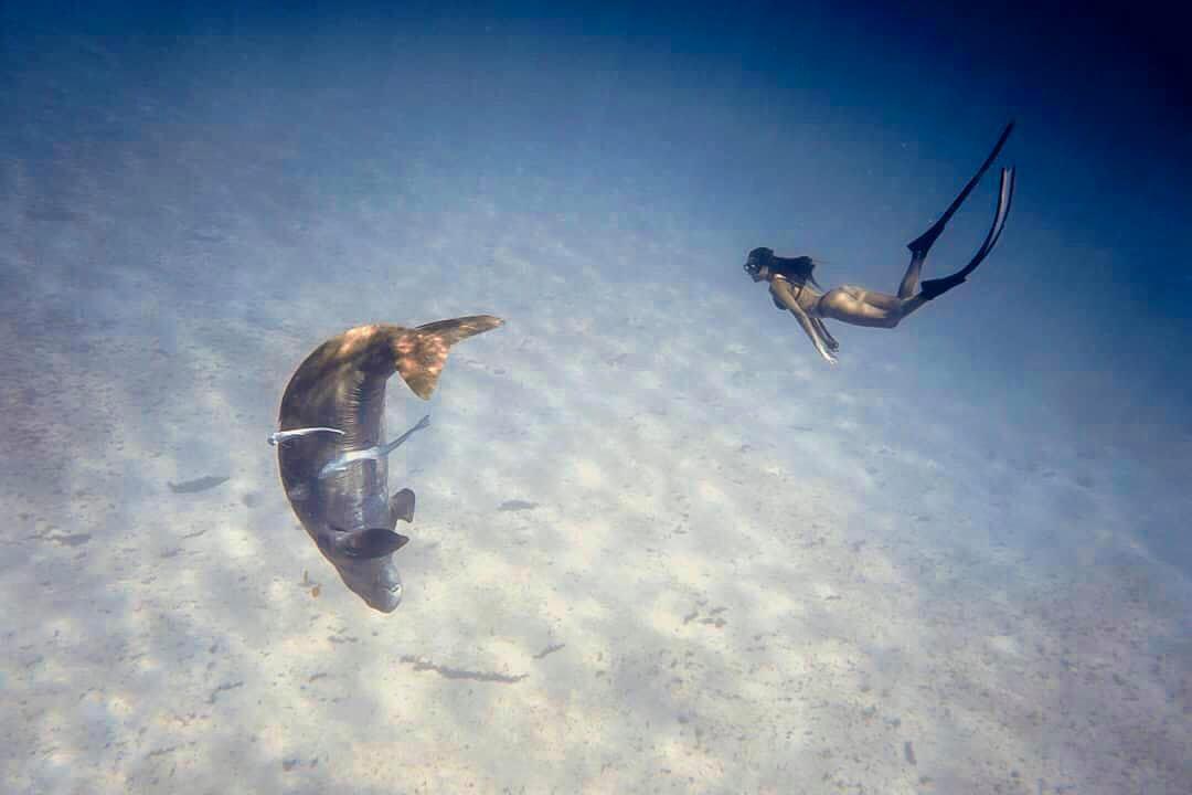 當妳在水下遇見真人魚