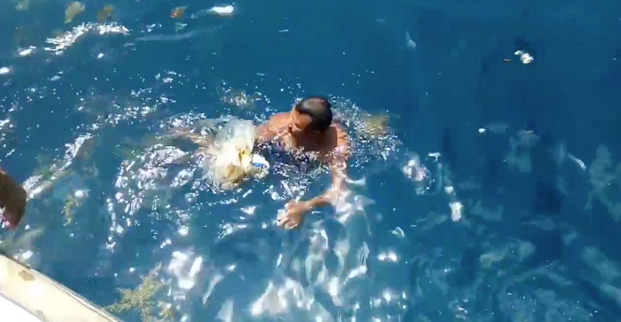 永續保育愛妮島: 拾起海中垃圾!